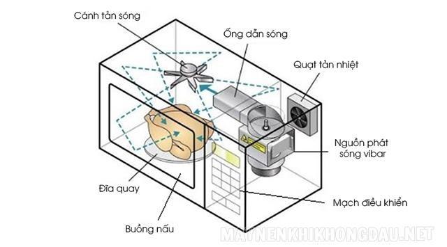 Các bộ phận cơ bản của lò vi sóng
